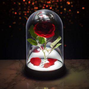 Lampe cloche «Rose Enchantée»