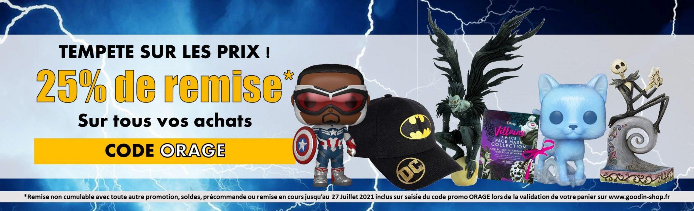 promotion 25% de remise code Orage sur www.goodin-shop.fr